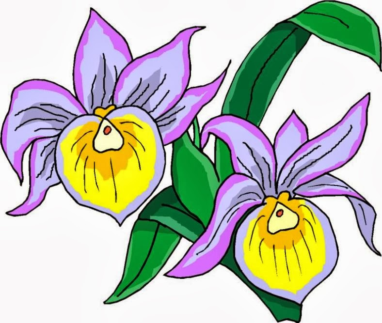 Vector Clipart - Jasmine flower, filled outline icon. Vector Illustration  gg103713064 - GoGraph