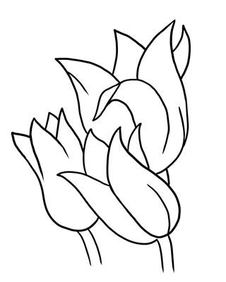 Heart Clip Art Outline Heart Clipart Panda