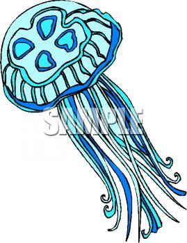 Jellyfish Clipart