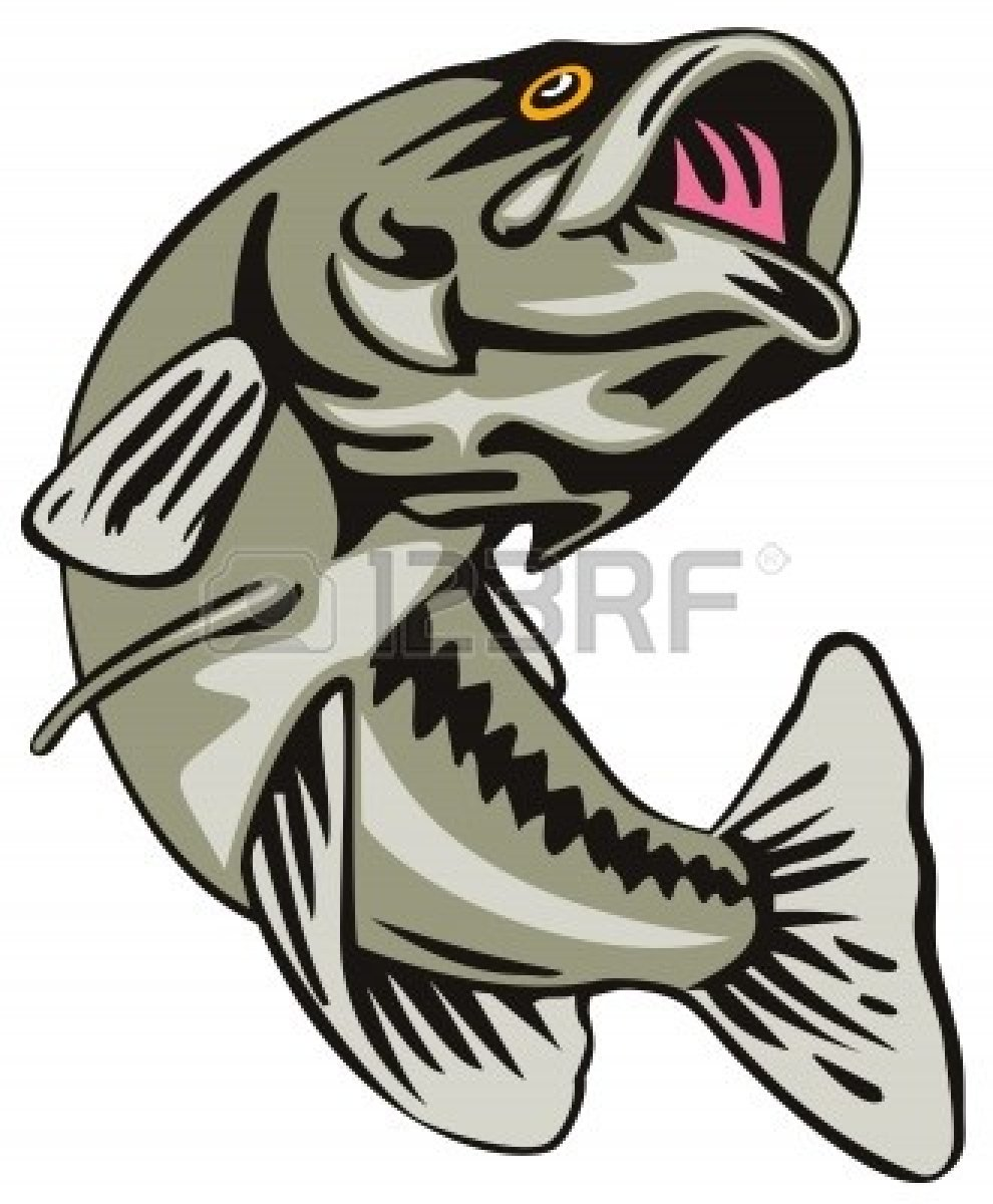 largemouth bass clip art - photo #10