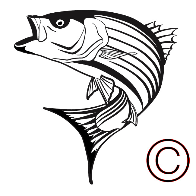 Image Result For Fish Clip Artfish Coloring Page