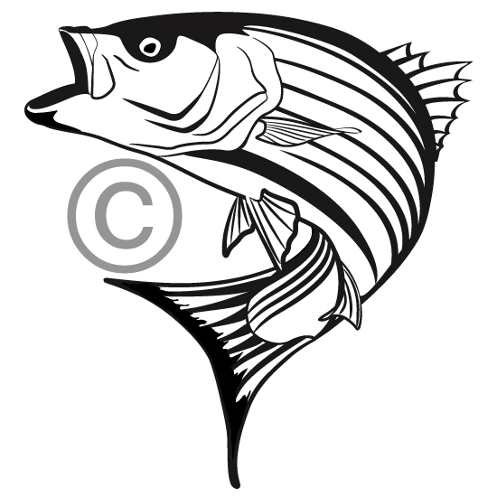 jumping stripped bass clipart panda free clipart images rh clipartpanda com bass jumping out of water clipart Bass Silhouette or Outline