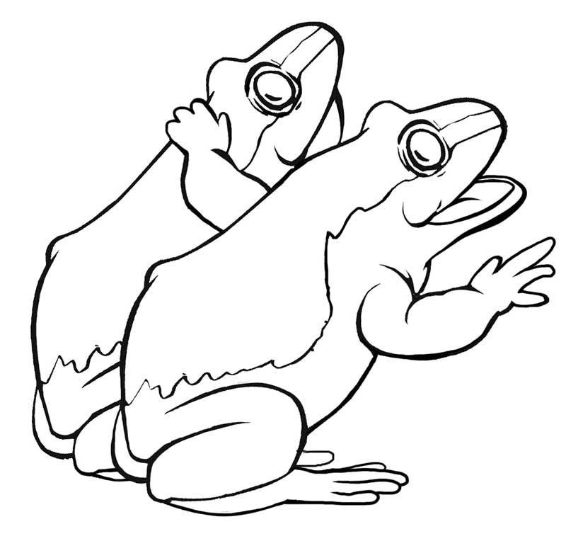 Jumping frog coloring pages - photo#15