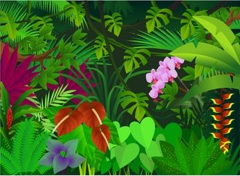 Clip Art Jungle Clipart jungle clip art animals clipart panda free images