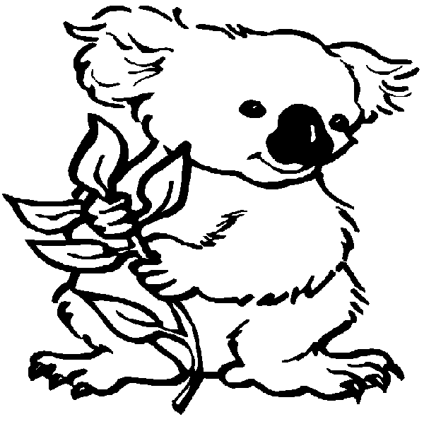Coloring Pages Koala : Free coloring pages of koala