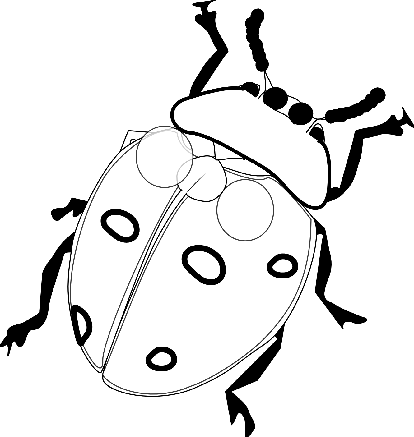 Line Drawing Lady : Ladybug drawing black and white clipart panda free