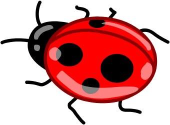 ladybug clip art free download clipart panda free clipart images rh clipartpanda com ladybug clip art free black and white ladybug clip art free printable
