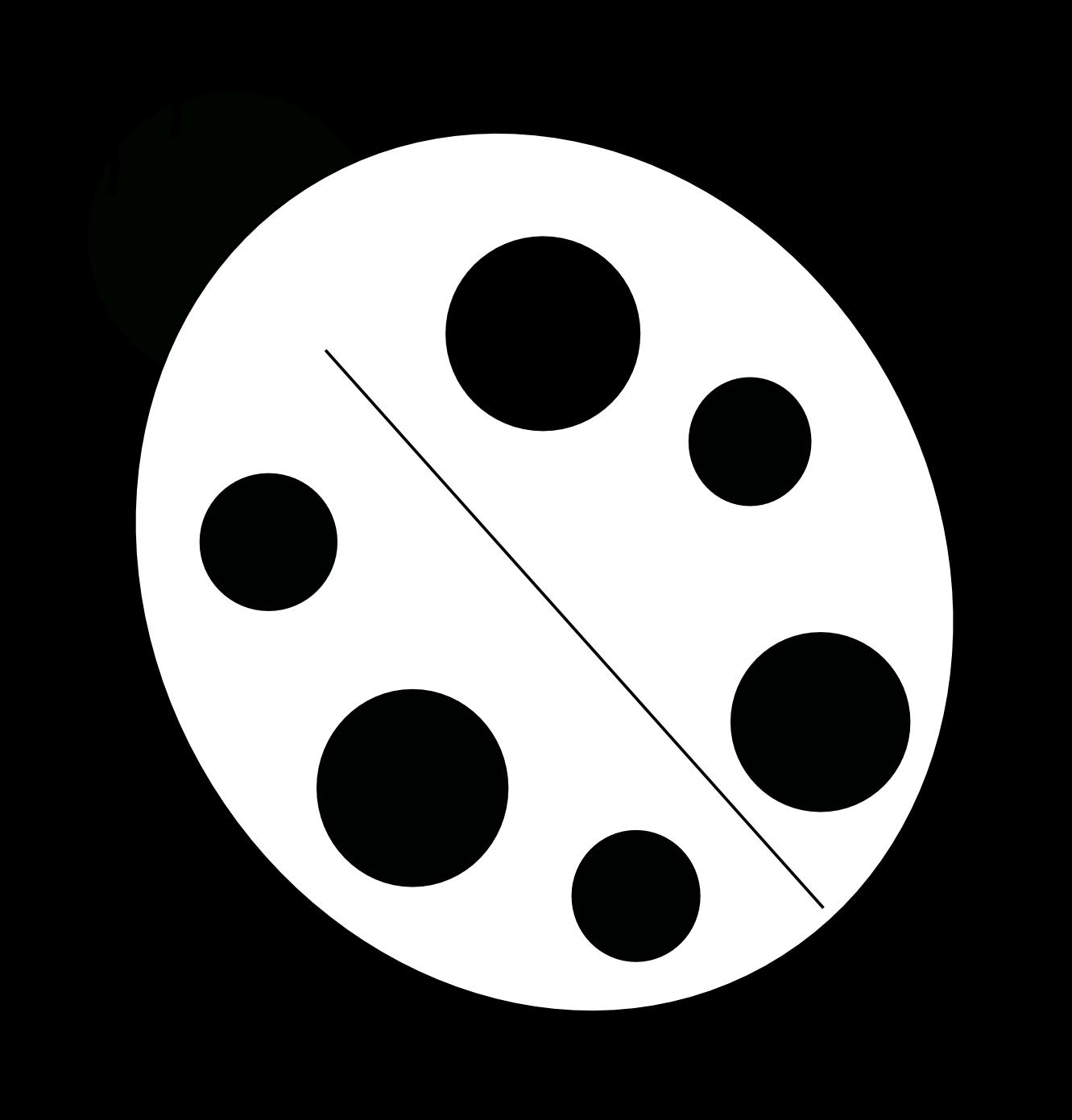 Black Ladybug Cliparts  Free Download Clip Art  Free