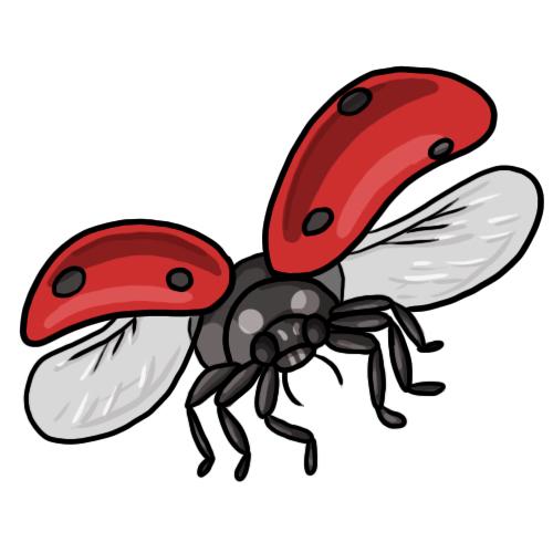ladybug flying clipart clipart panda free clipart images clipart ladybug cycle clipart ladybug outline