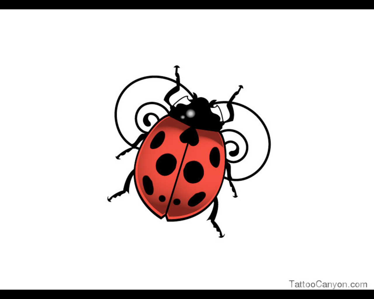 Ladybug Tattoo Drawing | Clipart Panda - Free Clipart Images