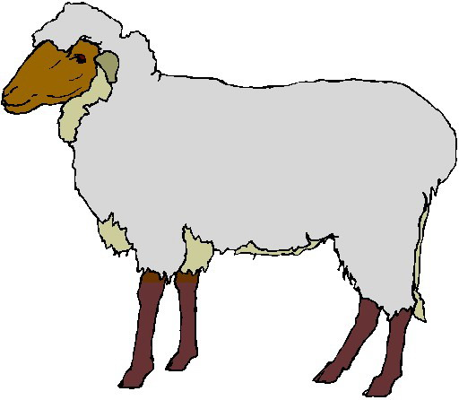 Great Lamb Clipart