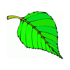 free clipart green leaf - photo #22