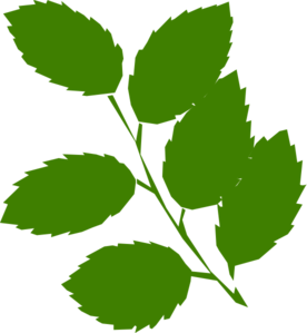 Green Leaves Images | Clipart Panda - Free Clipart Images