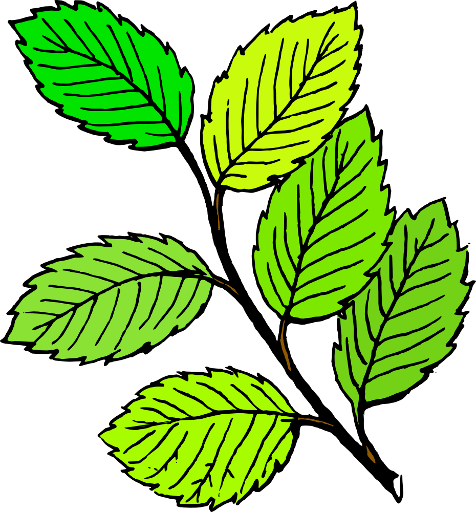 leaf clip art free clipart panda free clipart images rh clipartpanda com clipart of raking leaves clipart of leaves