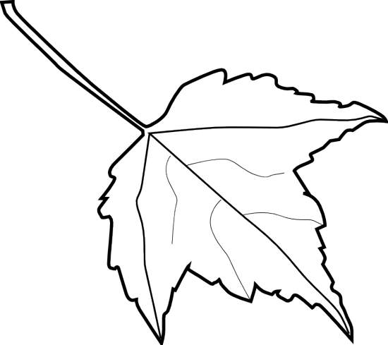 Leaf Clipart Black And White Clipart Panda Free