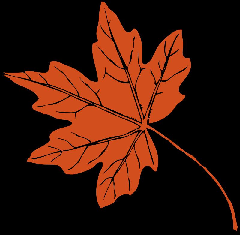 Clip Art Clipart Leaf maple leaves clip art clipart panda free images art