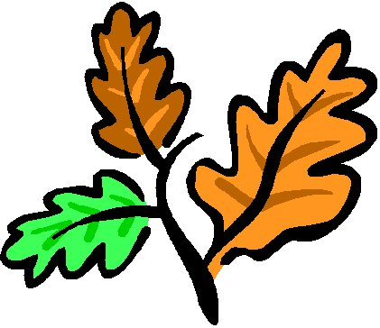 Popular Categor... Oak Leaf Pictures Clip Art