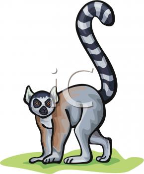 lemur clip art free clipart panda free clipart images lemur clip art black and white lemur face clipart