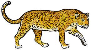 leopard clipart clipart panda free clipart images rh clipartpanda com leopard clipart images leopard clip art free