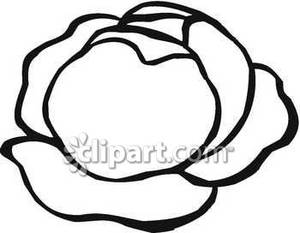 Clip Art Lettuce Clip Art lettuce clipart black and white panda free images