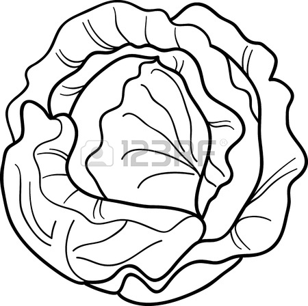 Lettuce Clipart Black And White | Clipart Panda - Free ...