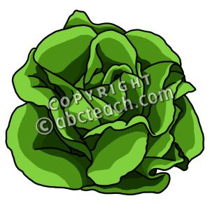 clip art lettuce color clipart panda free clipart images rh clipartpanda com lettuce clipart png clipart lettuce leaf