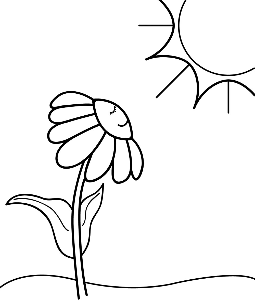 Cartoon Flower Line Drawing : Sunny clipart black and white panda free