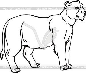 Image Gallery lioness sketch clip art