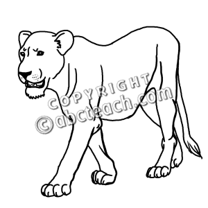 lioness coloring pages - photo#33