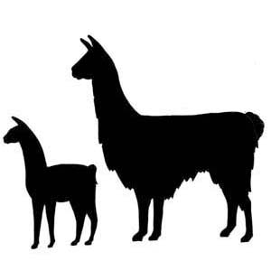 quality llama and alpaca clipart panda free clipart images rh clipartpanda com alpaca clip art free alpaca clipart