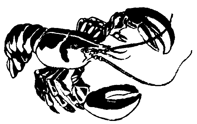 lobster%20clipart