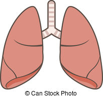 lung clipart clipart panda free clipart images rh clipartpanda com lungs clipart free lungs clipart gif