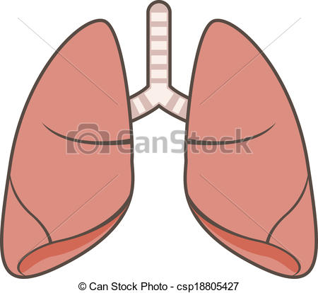 lung clipart clipart panda free clipart images rh clipartpanda com lungs clipart images lungs clipart