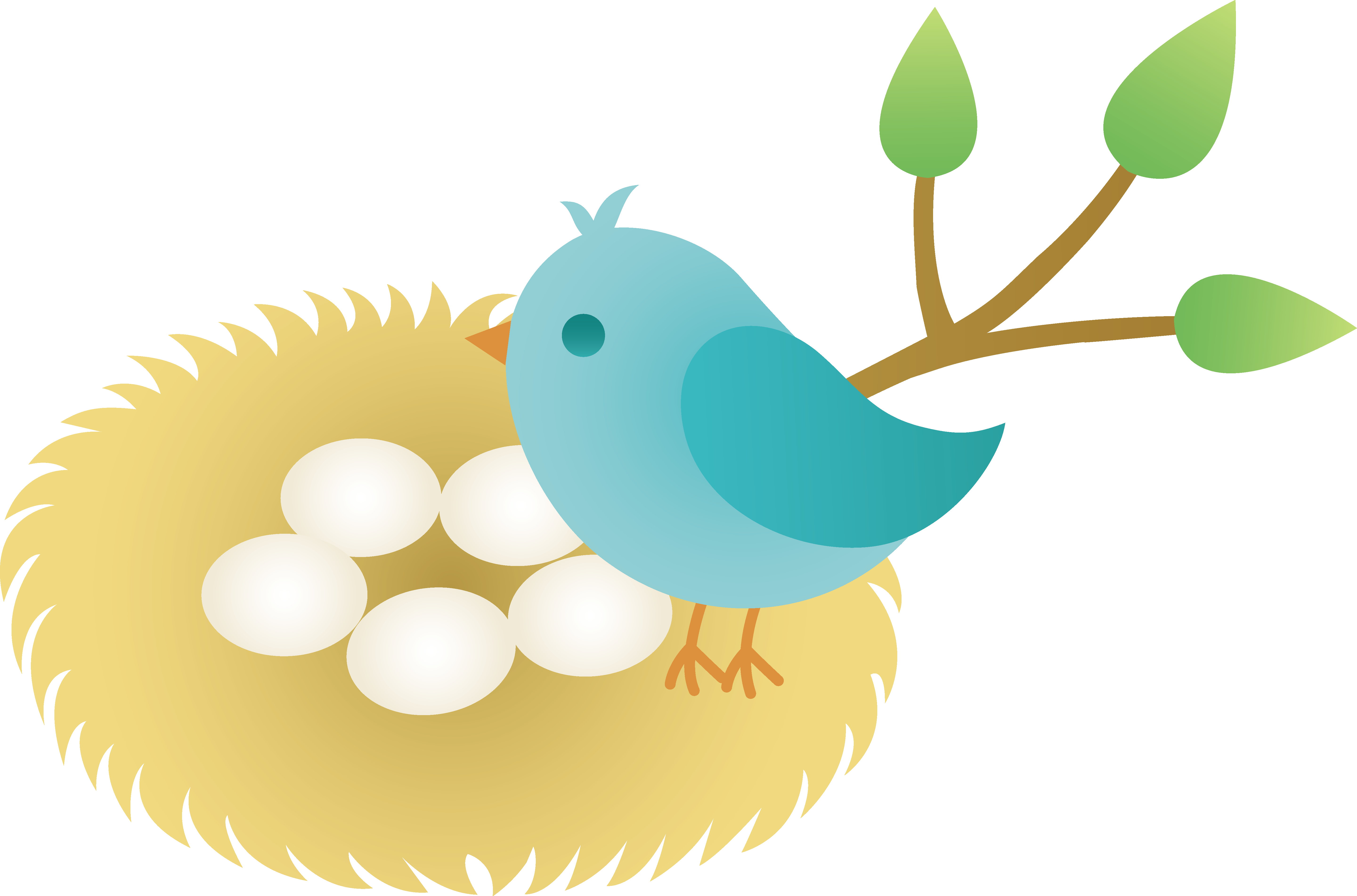 Displaying 20> Images For - Baby Bird Nest Clip Art...