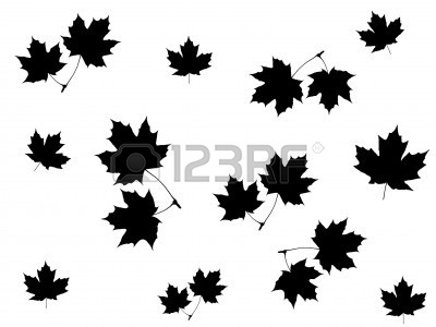 black and white maple leaf clipart panda free clipart images