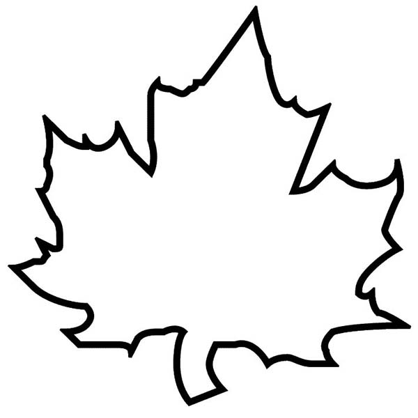Awesome Leaves Coloring Pages Images New Printable Coloring