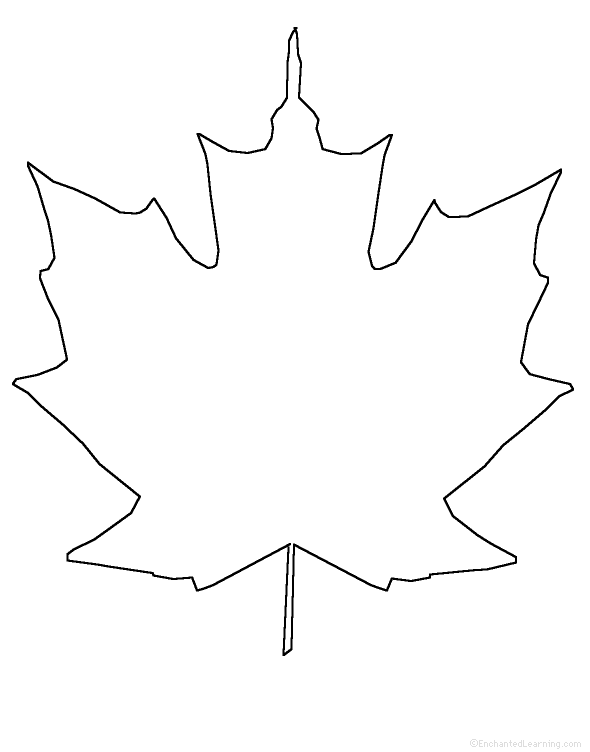 Sketches Of Maple Leaves Coloring Pages Maple Leaf Coloring Page
