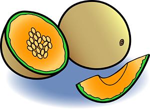 melon clipart clipart panda free clipart images rh clipartpanda com melon clipart lemon clipart png