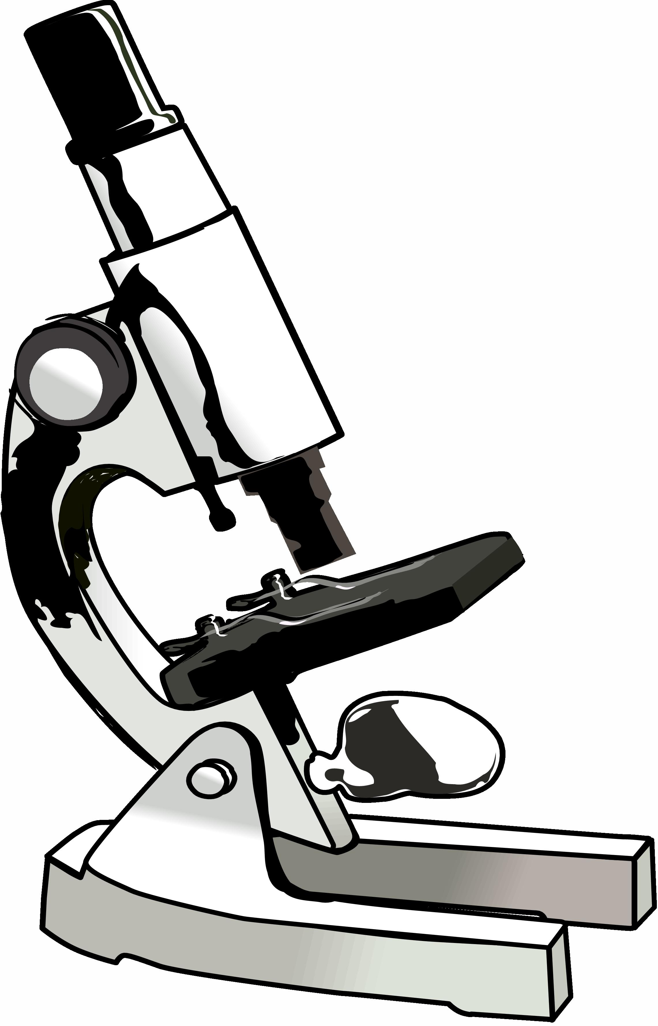 Microscope Lens Diagram