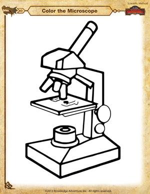 Microscope Drawing Worksheet Download