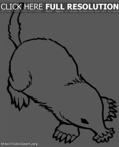 Mole Clip Art