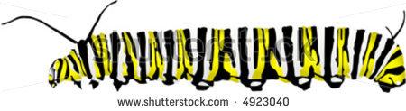 Vector monarch caterpillar clipart panda free clipart images