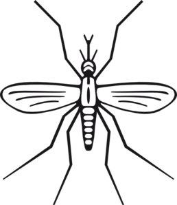 mosquito clip art images clipart panda free clipart images rh clipartpanda com mosquito clip art images mosquito clipart free