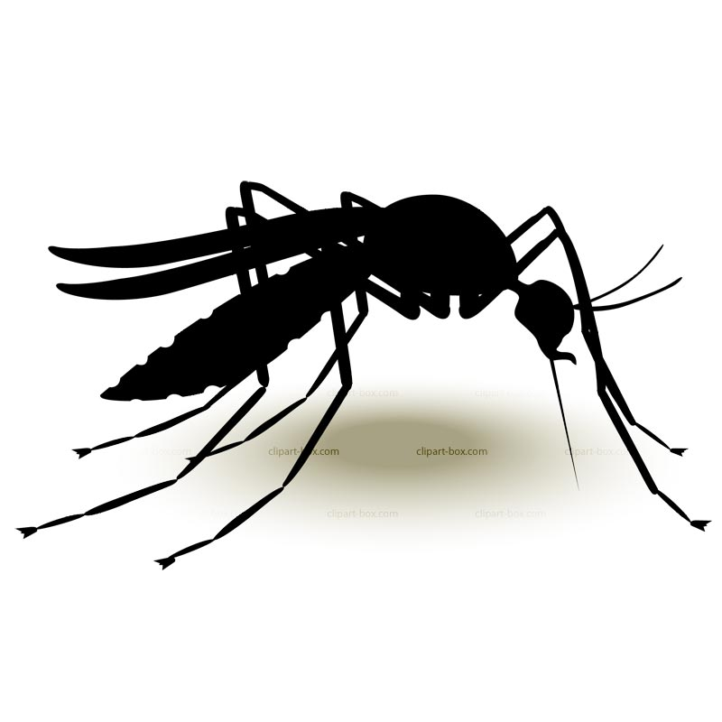 Use these free images for your websites, art projects, reports, and ...: www.clipartpanda.com/categories/mosquito-20clipart