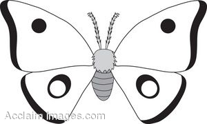 Moth Clipart | Clipart Panda - Free Clipart Images
