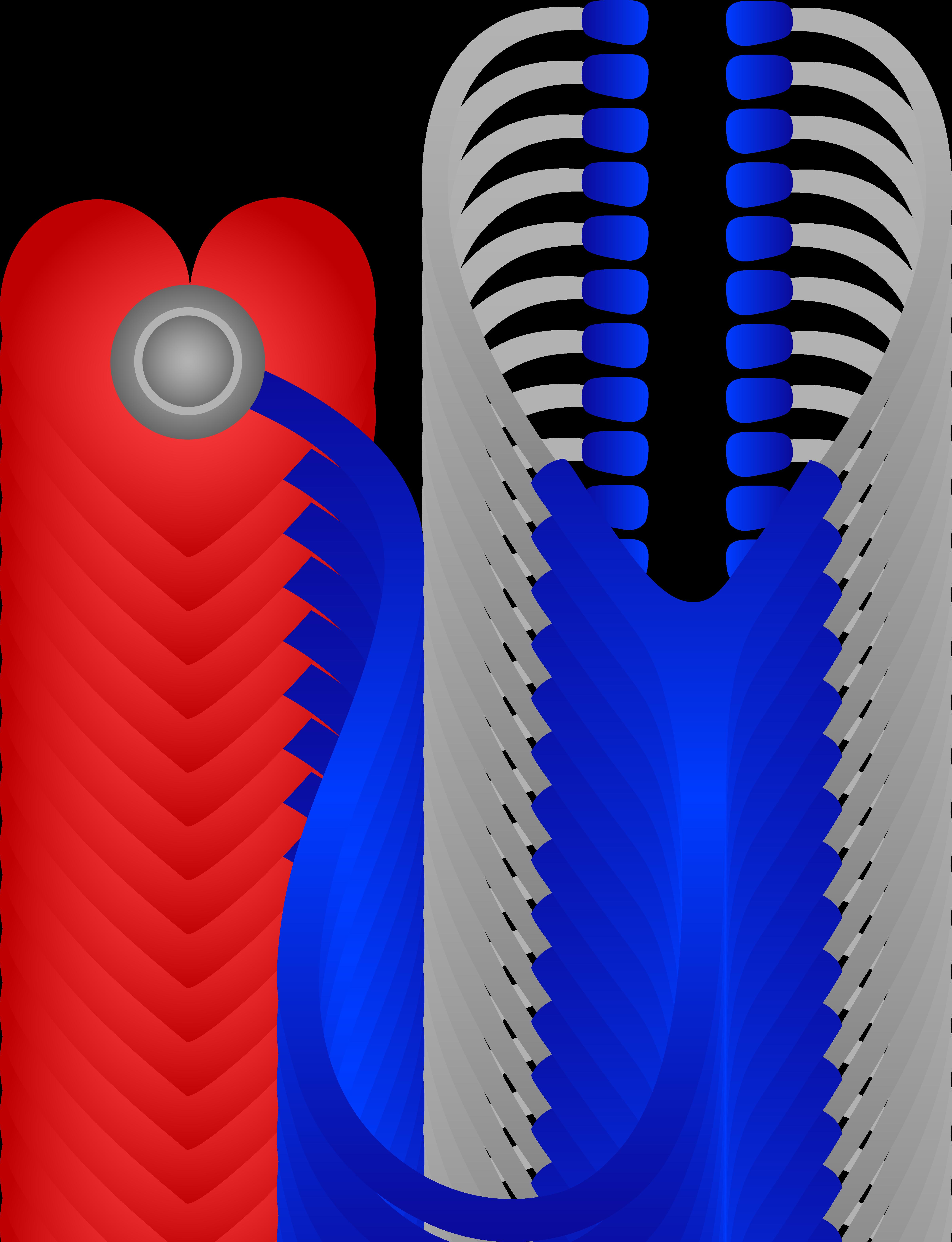 Heart Beat clip watch videos online 30