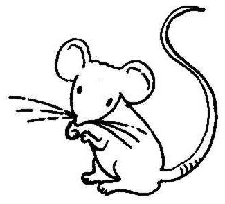 Mouse clip art black and white - photo#29