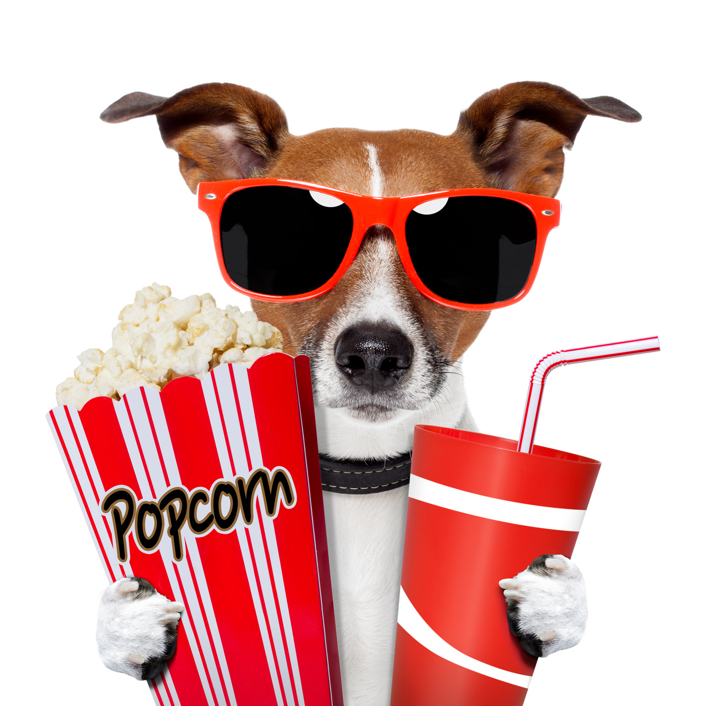 movie%20night%20clipart