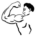 muscle%20clipart