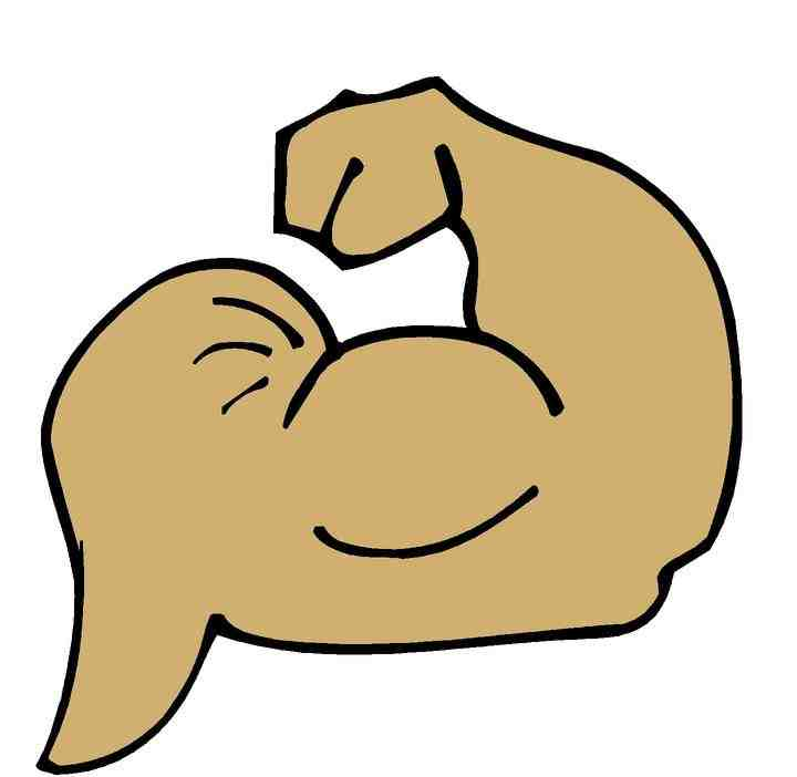 Muscles Clip Art | Clipart Panda - Free Clipart Images